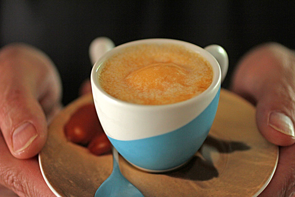 Post image for APRICOT AFFOGATO DOLCE