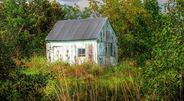 Post image for 52 sundays; october 2, 2011 – BARN PROJECT, SEPTEMBER WINNER