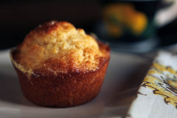 Post image for LEMON YOGURT MUFFINS & TASTE OF HOME GIVEAWAY
