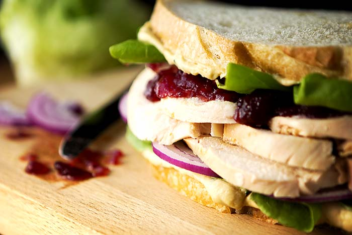 Post image for GLUTEN-FREE TURKEY SANDWICH W/CRANBERRY SAUCE & HUMMUS