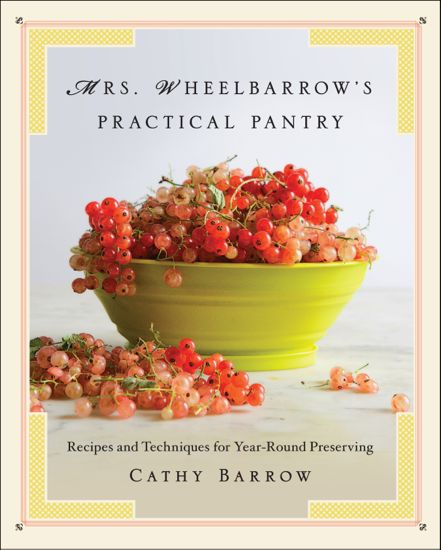 Ms.-Wheelbarrows-Practical_with-frame